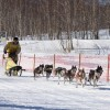 Миссия Петропавловской и Камчатской епархии в традиционной камчатской гонке на собачьих упряжках «Берингия 2017»