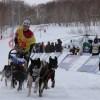 04 марта состоялось официальное открытие традиционной камчатской гонки на собачьих упряжках «Берингия-2018»