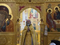 Плод веры. Протоиерей Александр Ильяшенко.