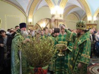 В праздник Входа Господня в Иерусалим архиепископ Феодор совершил Литургию в кафедральном соборе во имя Святой Живоначальной Троицы