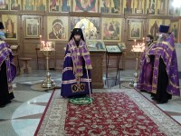 Встреча иконы Пресвятой Богородицы «Целительница»